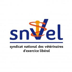 Logo_SNVEL_2011